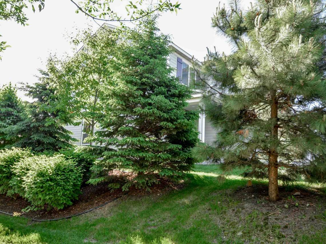 3154D_Countryside_Ave_Woodbury_MN_WEB_-27
