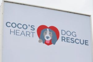 Coco's Heart Dog Rescue Hudson W