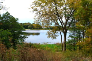 Woodbury, MN Fall Scenery on the Family Adventure Bike Ride
